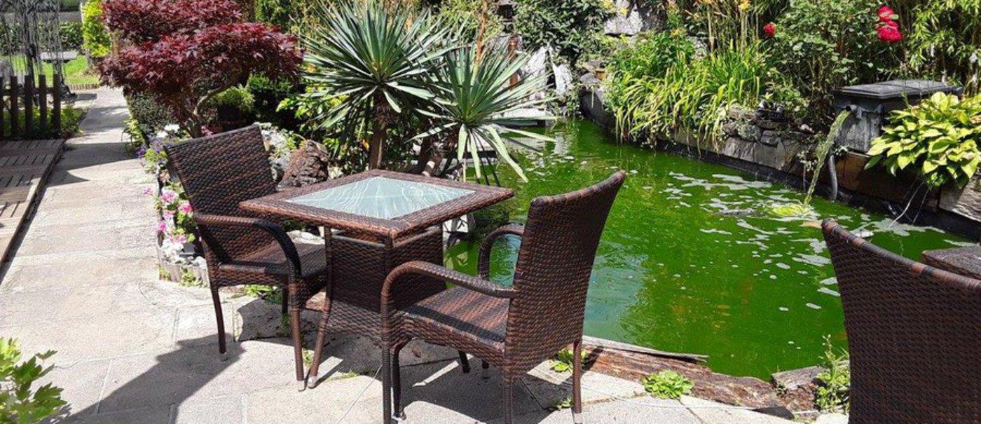 Salon De Jardin Asiatique le jardin du the - restaurant asiatique - jambes 5100